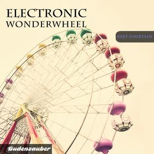 VARIOUS - Electronic Wonderwheel Vol 14
