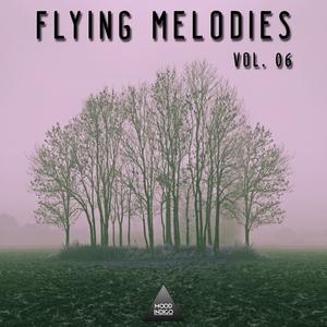 VARIOUS - Fyling Melodies Vol 06