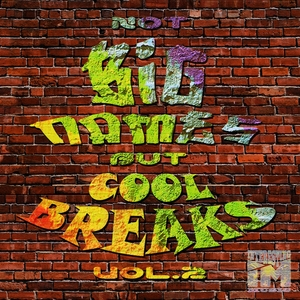 DEM MC/V6/PREDATORY MEERKATS/VARENNIKOFF/LLIAMAH/WOLCA - Not Big Names But Cool Breaks Vol 2