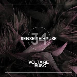 VARIOUS - Sense Of House Vol 34