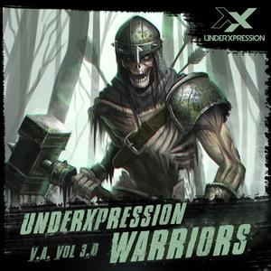 VARIOUS - Warriors Vol 3