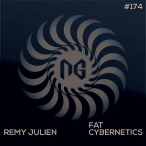 REMY JULIEN - Fat Cybernetics