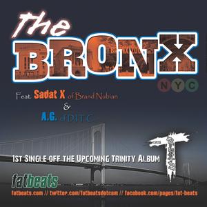 TRINITY - The Bronx