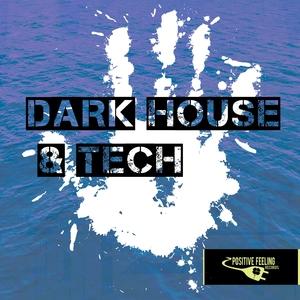 DETROIT 95 PROJECT/SINSONERIA/FLOWZHAKER & MIKE IMPROVISA/CELLOS BALEARICA - Dark House & Tech