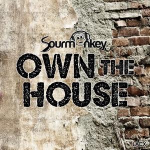 DJ SOURMONKEY - Own The House