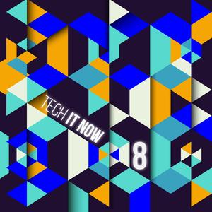 VARIOUS - Tech It Now! VOL 8