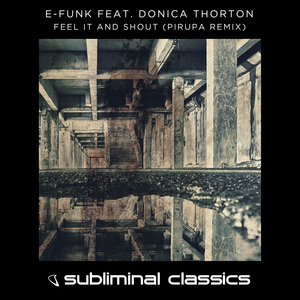 E-FUNK feat DONICA THORTON - Feel It And Shout