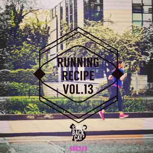 VARIOUS - Running Recipe Vol 13