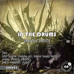 VARIOUS - In The Drums