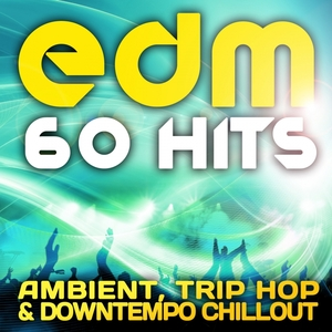 VARIOUS - EDM Ambient, Trip Hop & Downtempo Chillout (60 Top Hits)