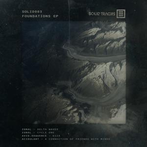AVIDSEQUENCE/ACIDULANT/ZONAL - Foundations EP