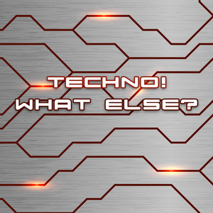 VARIOUS - Techno! What Else?