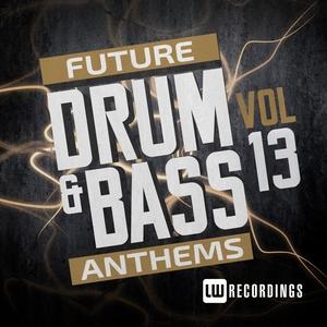 VARIOUS - Future Drum & Bass Anthems Vol 13
