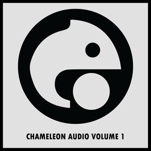 VARIOUS - Chameleon Audio Volume 1