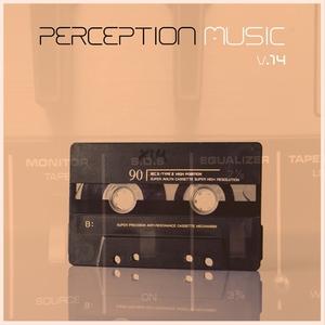 VARIOUS - Perception Music Vol 14