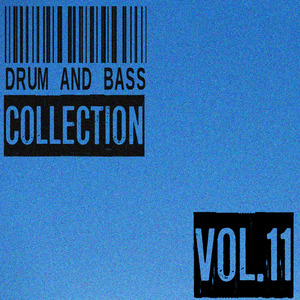 VARIOUS - Drum And Bass Collection Vol 11