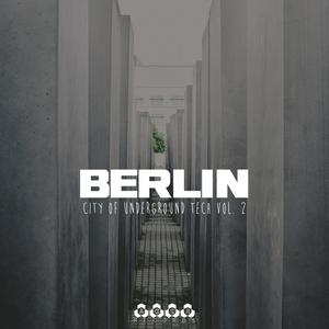 VARIOUS - Berlin - City Of Underground Tech Vol 2