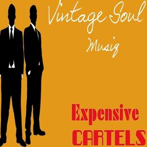 VINTAGE SOUL MUSIQ - Expensive Cartels