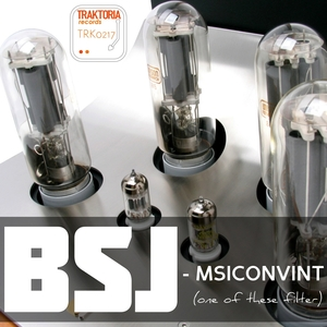BSJ - Msiconvint (One Of These Filter)