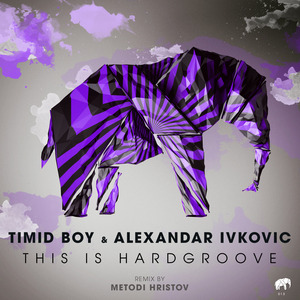 TIMID BOY - This Is Hardgroove