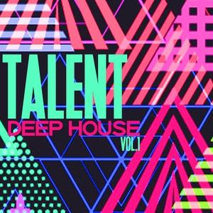 VARIOUS - Talent Deep House Vol 1