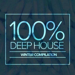 VARIOUS - 100% Deep House: Winter Compilation