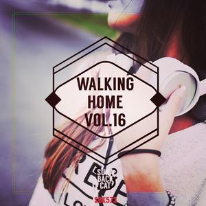 VARIOUS - Walking Home Vol 16