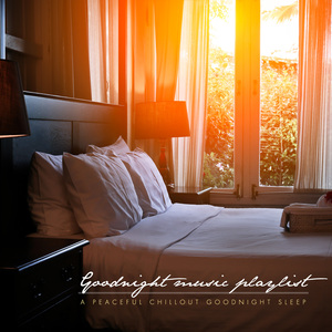 VARIOUS - Goodnight Music Playlist/A Peaceful Chillout Goodnight Sleep