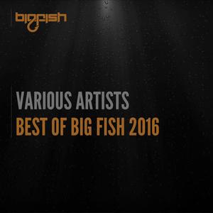 VARIOUS - Best Of Big Fish 2016