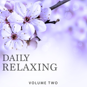 VARIOUS - Daily Relaxing Vol 2 (Chill Out & Ambient Music In Perfection)