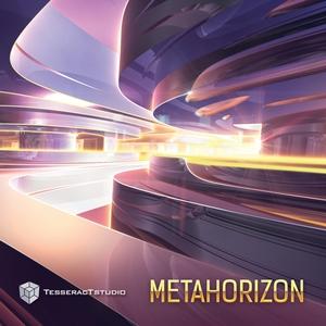 VARIOUS - Metahorizon
