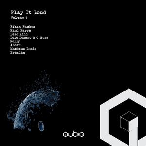 VARIOUS - Play It Loud Vol 5