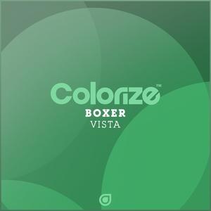 BOXER - Vista