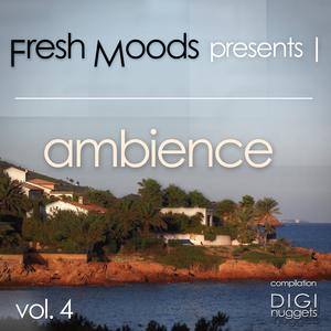 VARIOUS - Fresh Moods Present Ambience Vol 4