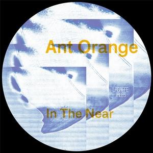 ANT ORANGE - In The Near