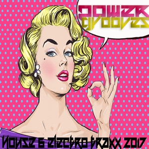 VARIOUS - Power Grooves 2017 (House And Electro Traxx)