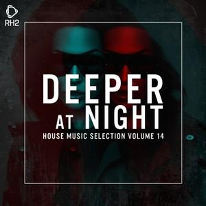 VARIOUS - Deeper At Night Vol 14