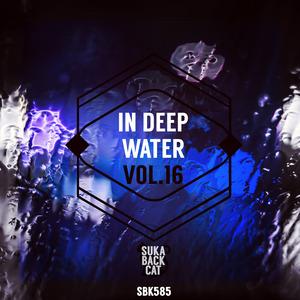 VARIOUS - In Deep Water Vol 16