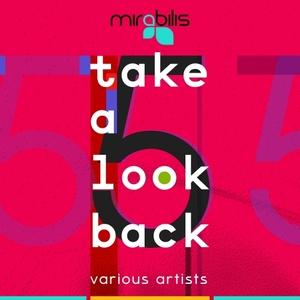 VARIOUS - Take A Look Back Vol 5