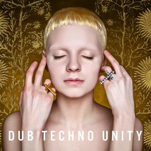 VARIOUS - Dub Techno Unity