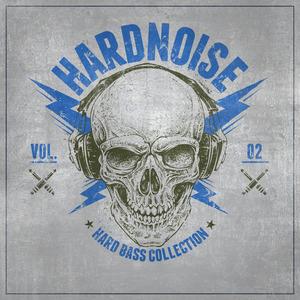 VARIOUS - Hardnoise Vol 2