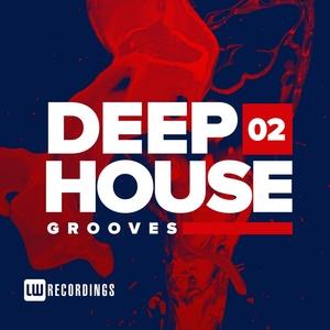 VARIOUS - Deep House Grooves Vol 02