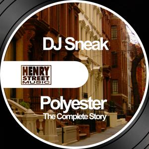 DJ SNEAK - Polyester