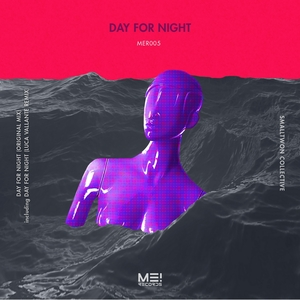 SMALLTOWN COLLECTIVE - Day For Night