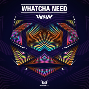 W&W - Whatcha Need