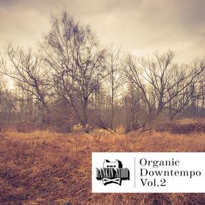 RANKIN AUDIO - Organic Downtempo Vol 2 (Sample Pack WAV)