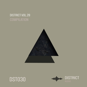VARIOUS - District 28