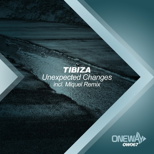 TIBIZA - Unexpected Changes
