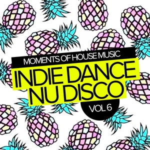 VARIOUS - Moments Of House Music Vol 6/Indie Dance Nu Disco