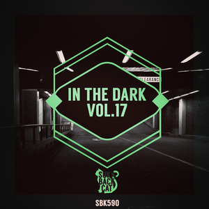 VARIOUS - In The Dark Vol 17